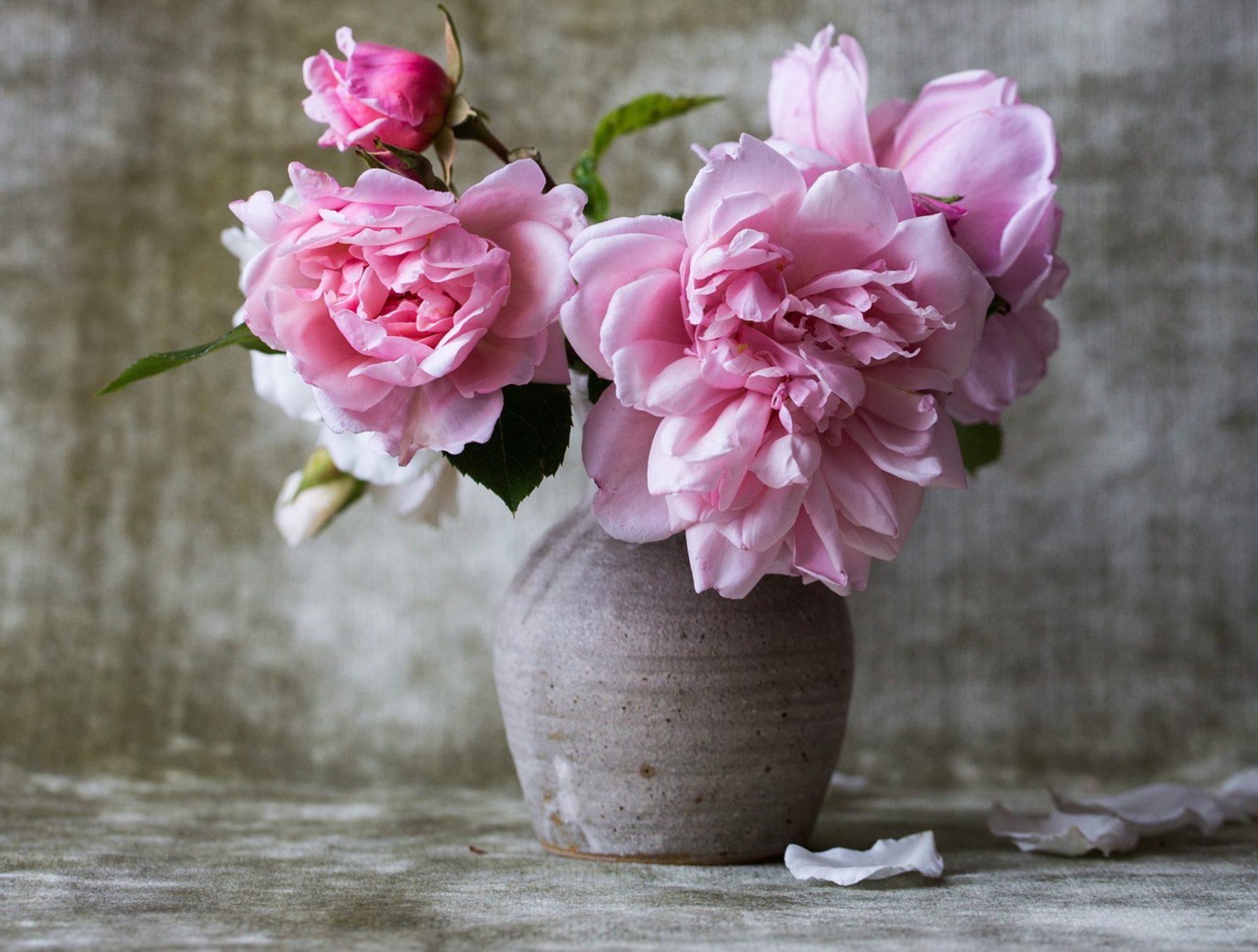 Blumenbinderei - Frei Karin